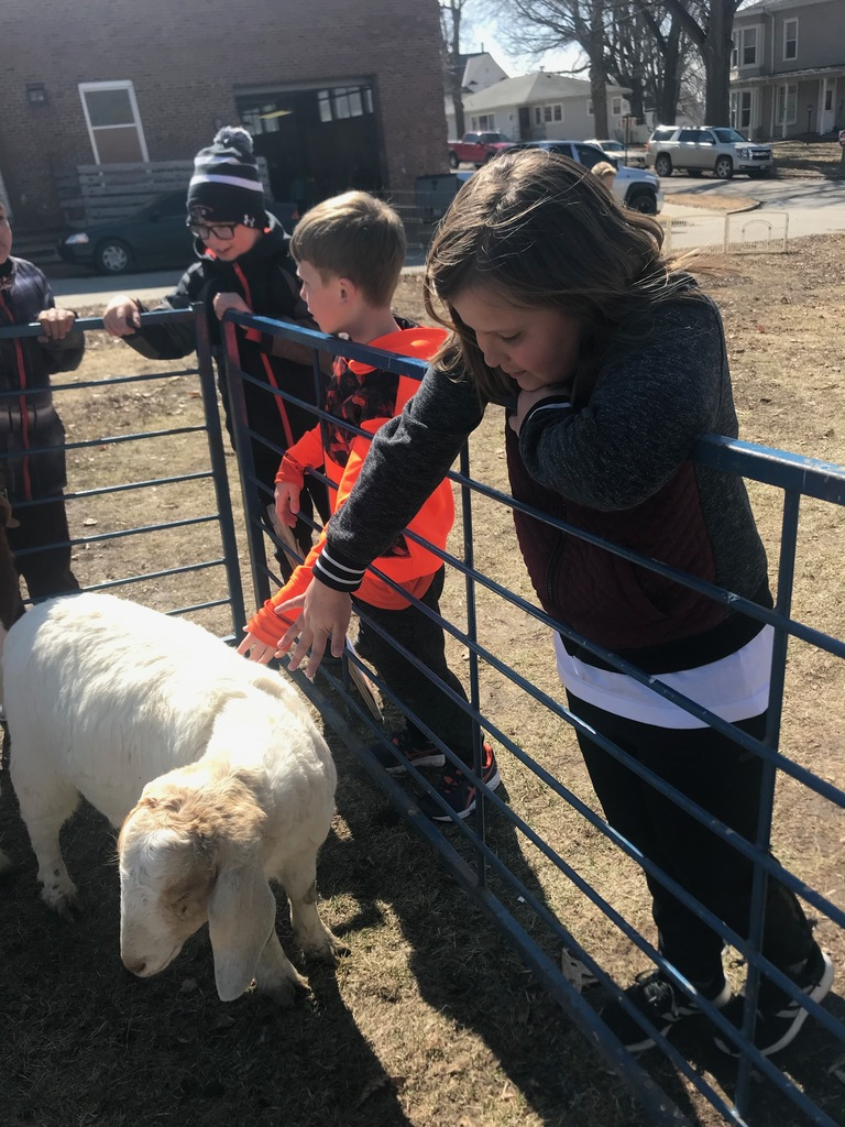 Beautiful day for a petting zoo!